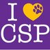 CSP_bigger
